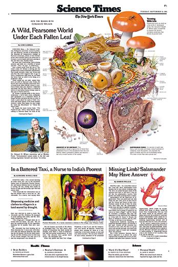 NYT,2002-09-24,,,F,1-4C